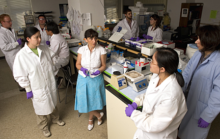 Kalina Hristova,center, directs a Johns Hopkins lab team that specializes in membrane biophysics and biomolecular materials. Photo by Will Kirk//HomewoodPhoto.jhu.edu