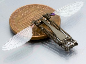 The butterfly research will aid the development of flying bug-size robots. Picture is an insect-inspired flapping-wing micro air vehicle under development at Harvard. Photo provided by Robert J. Wood, associate professor, and Pratheev Sreetharan, Harvard Microrobotics Lab, Harvard University.